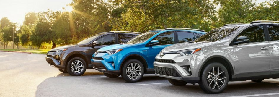 A black Toyota RAV4, blue Toyota RAV4, and silver Toyota RAV4 lined up under a tree